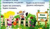 """Объявляется тематическая неделя: """"Мы сажаем огород..."""""""